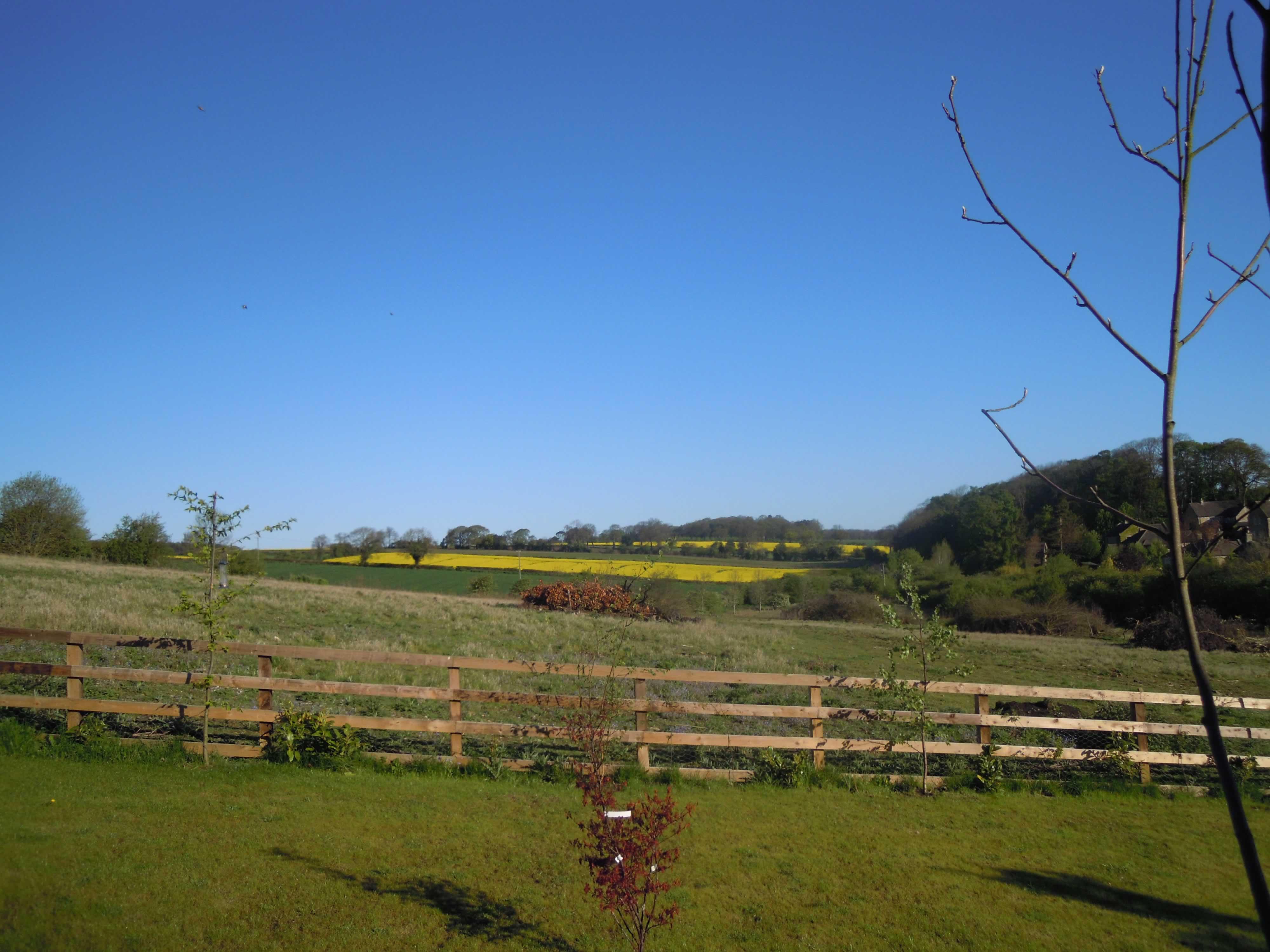 View to Northgate Lane